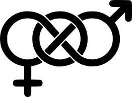 teoria queer